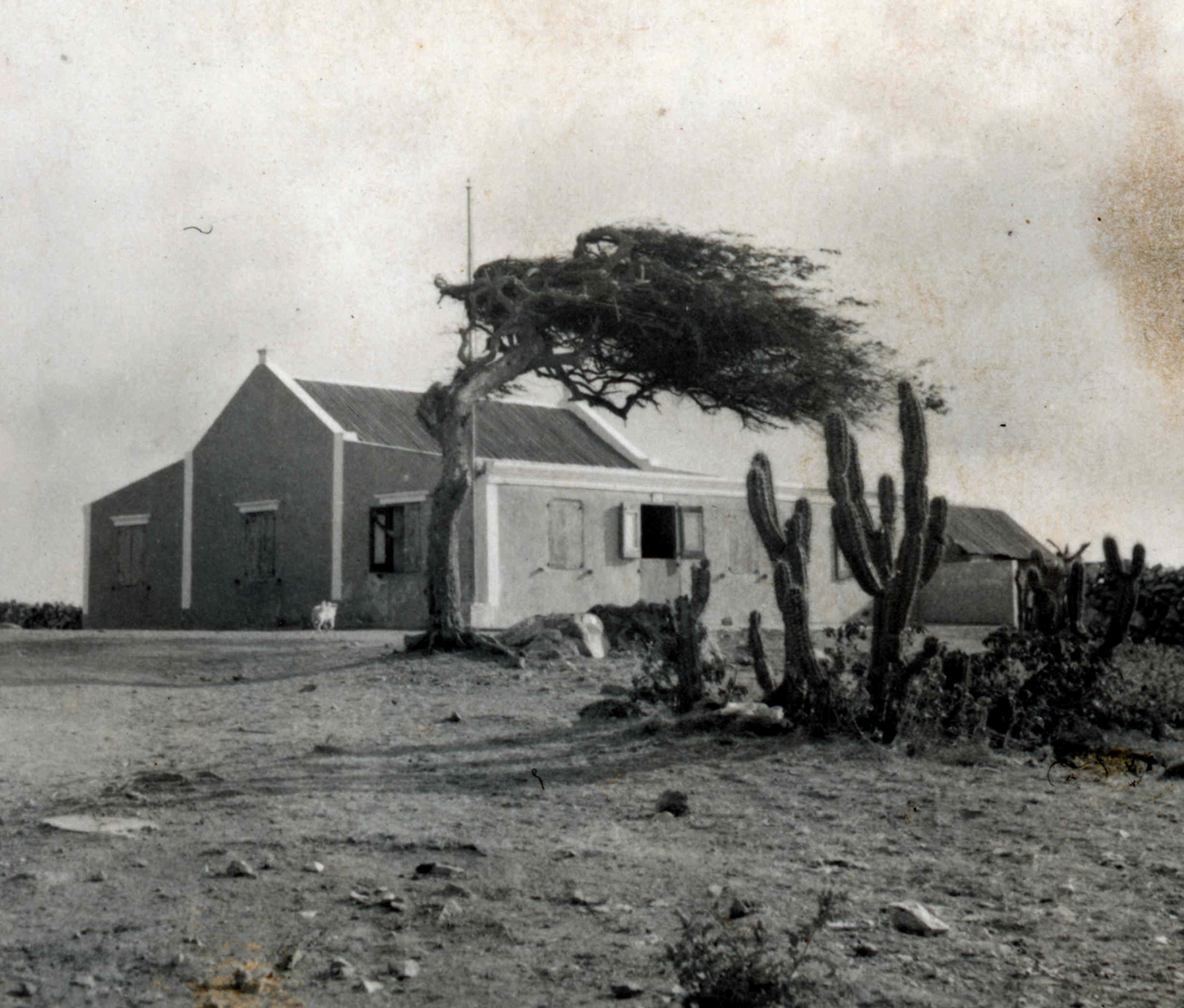 1000 images about old aruba on pinterest del carmen for Houses pictures gallery